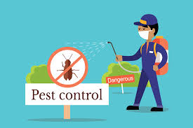 Expertise in Pest Control Services